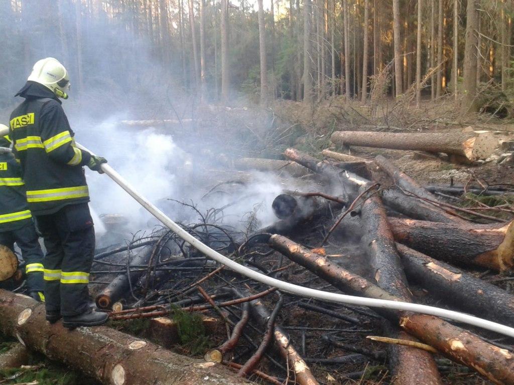 Požár lesa na ploše 10x10 m 1